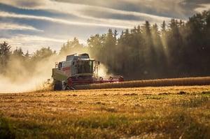 Spreu vom Weizen trennen